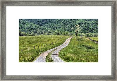 Meet Me At The Tree Framed Print by JC Findley
