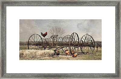 Meeting At Rusty Rake Framed Print