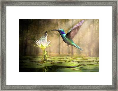 Meeting Mother Nature Framed Print