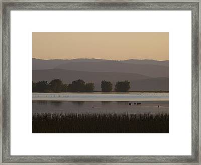 Meeting Nine Pipes At 854 Framed Print by Rein Gillstrom