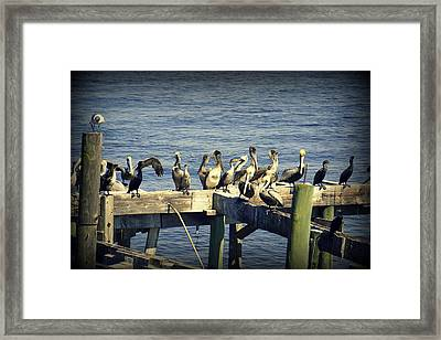 Meeting Of The Minds Framed Print
