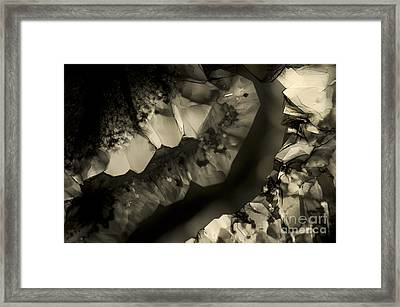 Framed Print featuring the photograph Meeting by Olimpia - Hinamatsuri Barbu