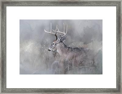 Meeting Winter Head On Framed Print