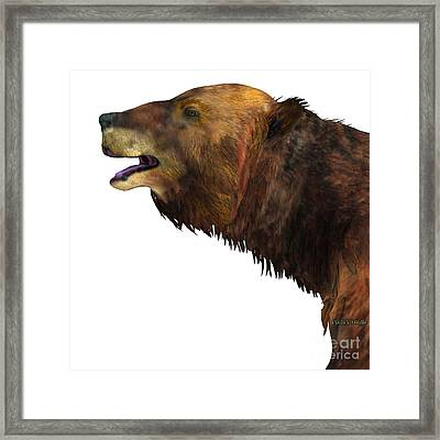 Megatherium Sloth Head Framed Print by Corey Ford