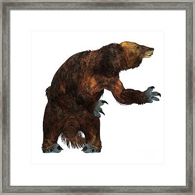 Megatherium Sloth On White Framed Print by Corey Ford