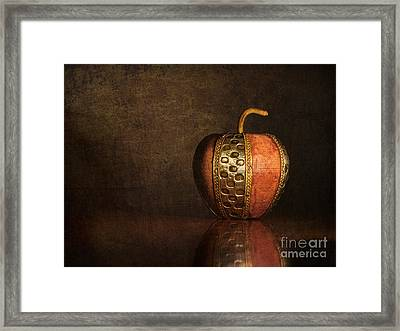 Framed Print featuring the photograph Mela In Metallo by Mark Miller
