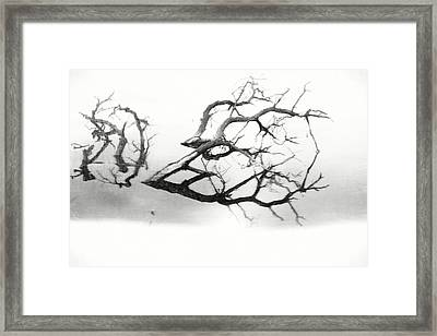 Melancholy Mood Framed Print by Dan Sproul