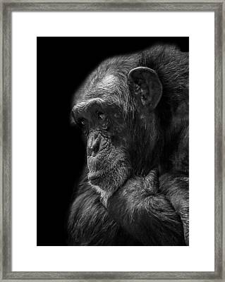 Melancholy Framed Print by Paul Neville