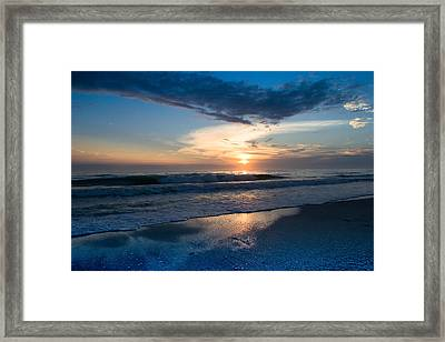 Framed Print featuring the photograph Mellifluous  by Melanie Moraga