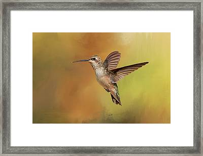 Mellow Yellow Framed Print by Donna Kennedy