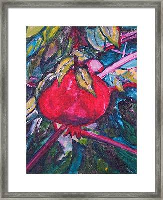 Framed Print featuring the painting Melograno by Helena Bebirian