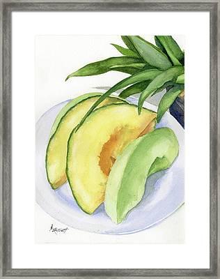 Melon Color Baby Framed Print