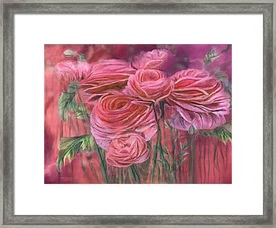 Melon Ranunculus Framed Print by Carol Cavalaris