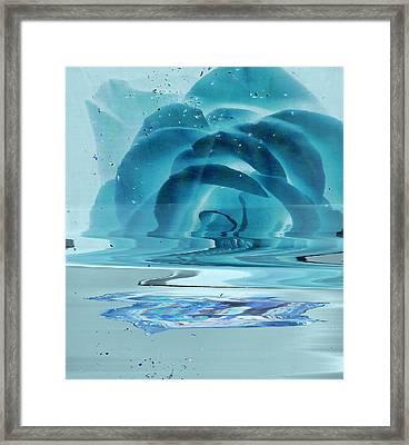 Melting Blue Rose  Framed Print by Anne-Elizabeth Whiteway
