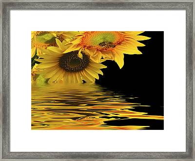 Melting Framed Print