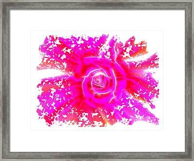 Melting Pink Rose Fractalius Framed Print