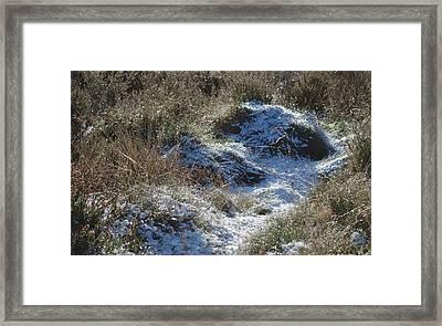 Melting Snow On Plants Framed Print
