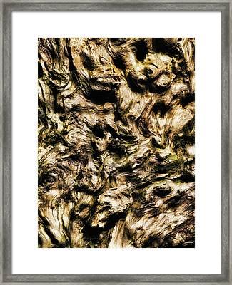Melting Wood Framed Print by Wim Lanclus
