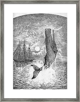 Melville: Moby Dick Framed Print by Granger