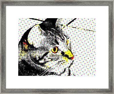 Melvin In Dots Framed Print by Paulo Guimaraes