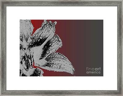Memories Framed Print by Ankeeta Bansal