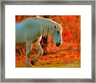 Memories At Sunset Framed Print