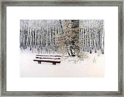 Memories Of Birchtrees Framed Print by Conrad Mieschke