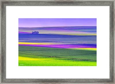Memories Of Colors Framed Print