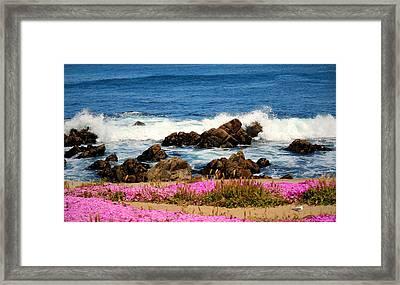 Memories Of Monterey Bay Framed Print