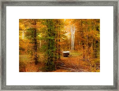 Memories Of Seasons Past  Framed Print