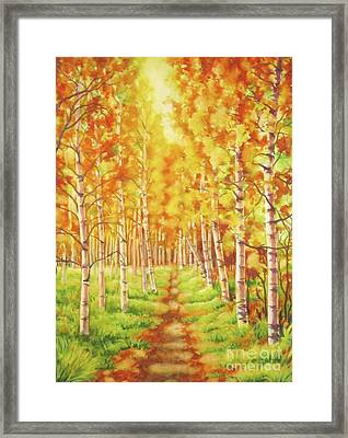 Memories Of The Birch Country Framed Print