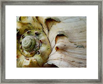 Memories Of Waves Framed Print