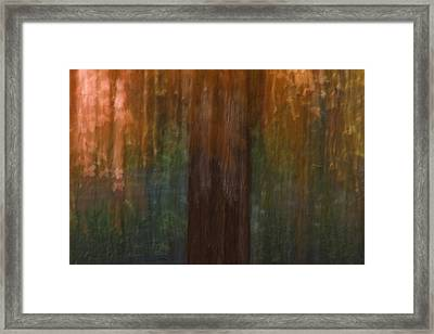 Memory Of Trinity Maple Framed Print