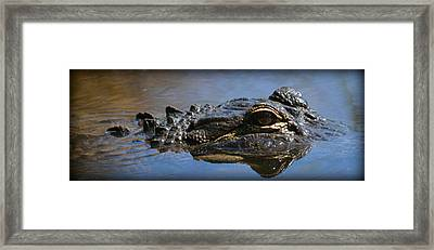 Menacing Alligator Framed Print