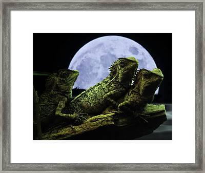 Menage A Trois Framed Print by Jeremy Martinson