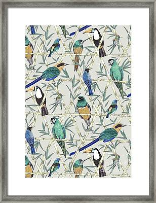 Menagerie Framed Print by Jacqueline Colley