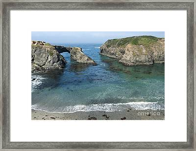 Mendicino County Viewpoint Framed Print by Sandra Bronstein