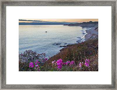 Mendocino Coast At Sunset Framed Print
