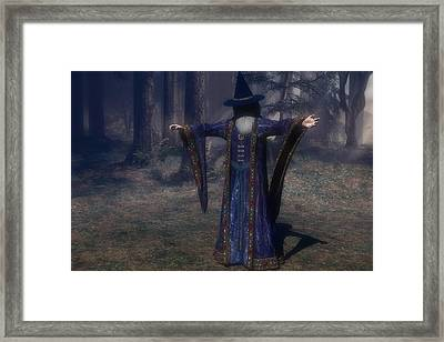 Mentor Framed Print by Sipo Liimatainen