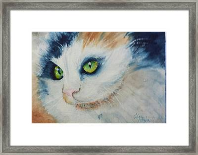 Meow II Framed Print by Elaine Frances Moriarty