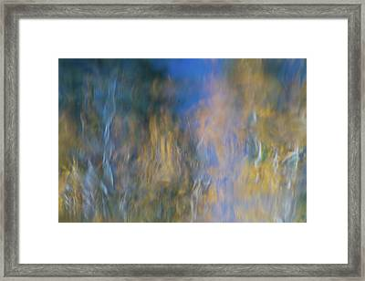 Merced River Reflections 14 Framed Print by Larry Marshall