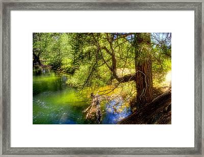 Merced River2 Framed Print