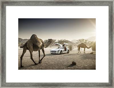 Mercedes Benz Sls With Camels In Saudi Framed Print