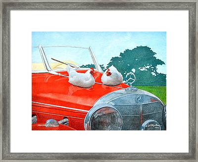 Mercedes Hens... Framed Print by Will Bullas