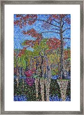 Merchants Millpond State Park 1 Framed Print by Micah Mullen