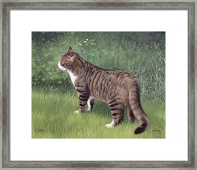 Merlin Portrait Framed Print