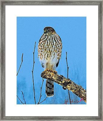 Framed Print featuring the digital art Merlin    Not The Majician by John Selmer Sr