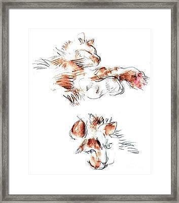 Merph Framed Print by Carolyn Weltman