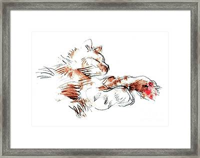 Merph Chillin' - Pet Portrait Framed Print