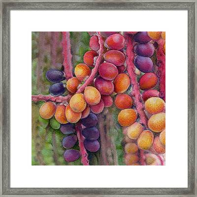 Merry Berries Framed Print by Mindy Lighthipe